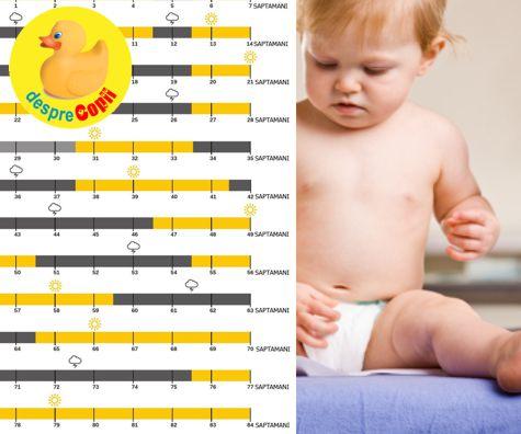 Infografic al celor 10 puseuri de crestere ale bebelusului