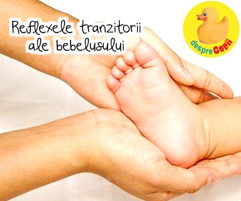 Reflexele unui nou nascut - reflexe tranzitorii ale bebelusului