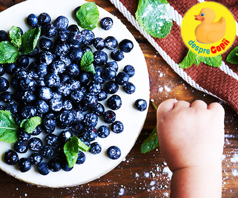 11 Retete cu afine pentru bebelusi