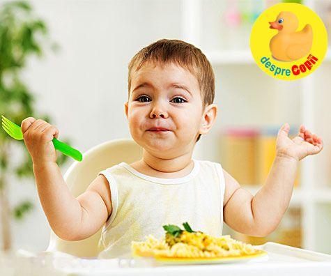 Retete pentru bebelusii cu varsta cuprinsa intre 12-18 luni