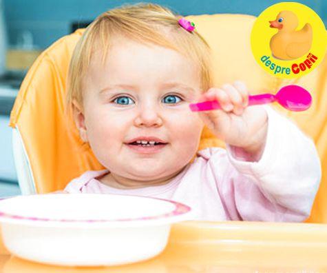 Retete de piureuri pentru bebelusi - lunile 9-12