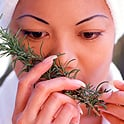 Beneficiile terapeutice ale uleiului de rozmarin