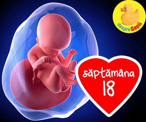Saptamana 18 de sarcina - saptamana cand poti simti prima miscare a bebelusului tau