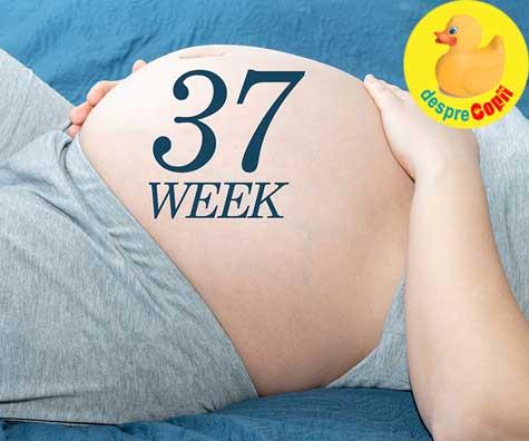 Cu burtica la 37 de saptamani - jurnal de sarcina
