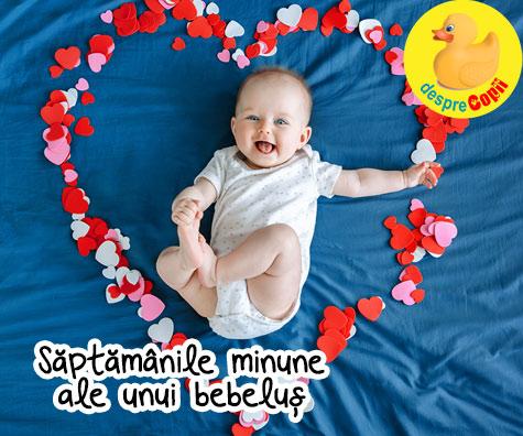 Saptamanile minune ale bebelusului: cele 10 saptamani intense din dezvoltarea primelor 20 de luni