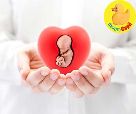 Sarcina este miracolul vietii - jurnal de sarcina