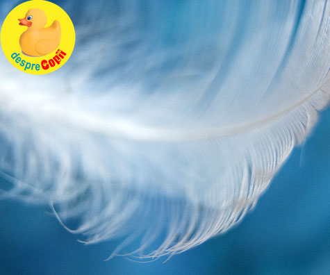 11 semne ca ingerul tau pazitor este in preajma ta