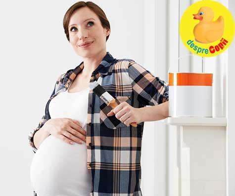 Sindromul cuibului in sarcina -  sau instinctul mamei de a face cuib bebelusului