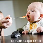 Retete de piureuri pentru bebelusi - lunile 7-8