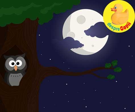 Somnul copilului: Poate afecta LUNA somnul lor?