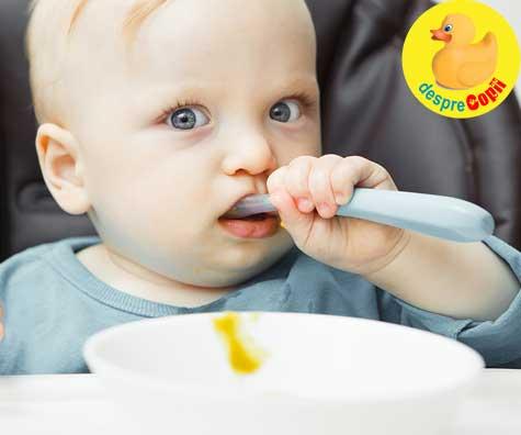Supe pentru bebelusi. 20 retete pentru fiecare luna de diversificare