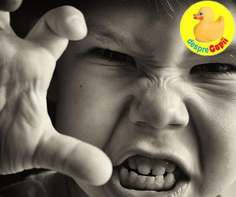 Accesele de furie ale copiilor: ce putem face si ce nu trebuie sa facem
