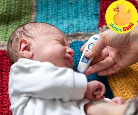 Greselile mamicilor de bebelusi: reactia gresita la febra bebelusului
