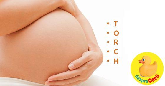 Testul TORCH de depistare a infectiilor in sarcina