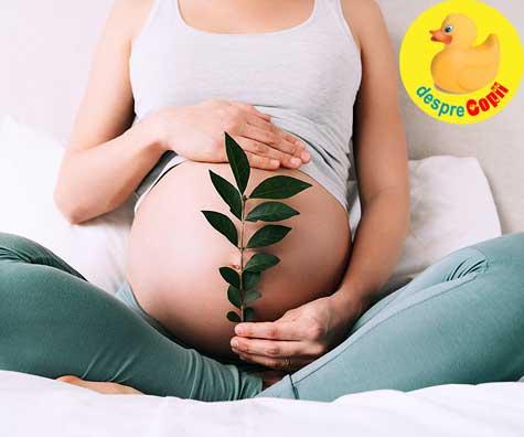 Cand crezi, visele devin realitate: sansa noastra a fost FIV - jurnal de sarcina