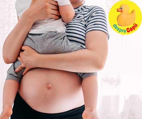 A doua sarcina si ultima - jurnal de sarcina