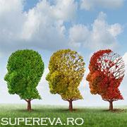 Creierul tau ce varsta are?